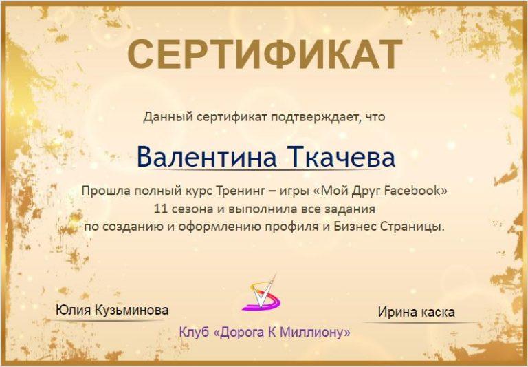 Сертификат в игре Мой друг ФВ